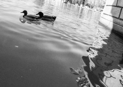 fotografia_espacios_29